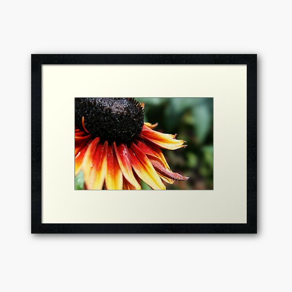 Can You see Me? Framed Art Print