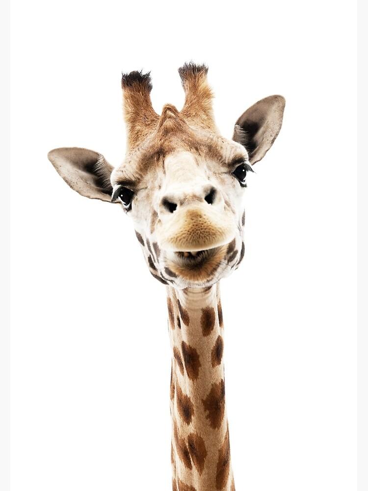 Giraffe von LotusPrintShop