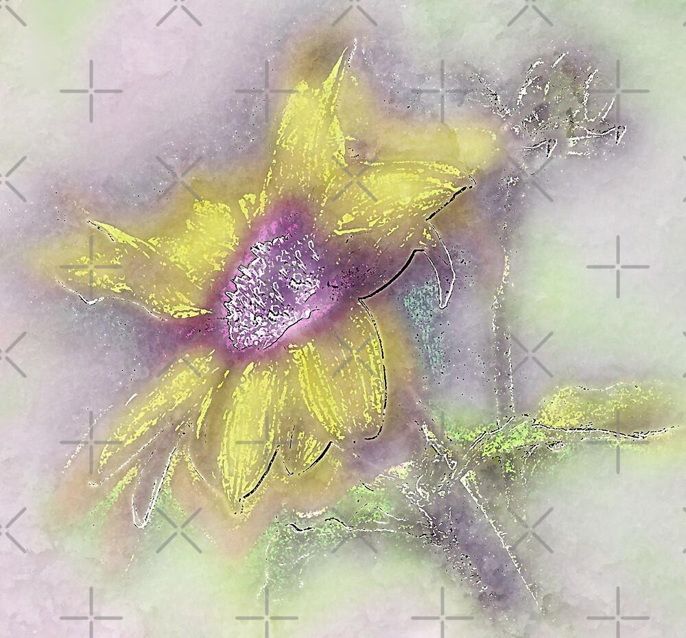 Sunshine On A Flower Looks So Lovely by CarolM