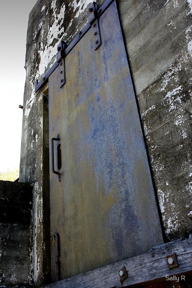 death's door by Sally R