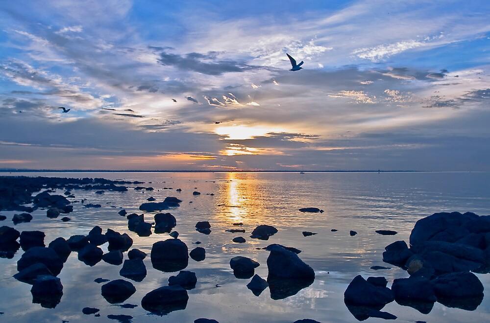 sunrise  williamstown new day by david de roach
