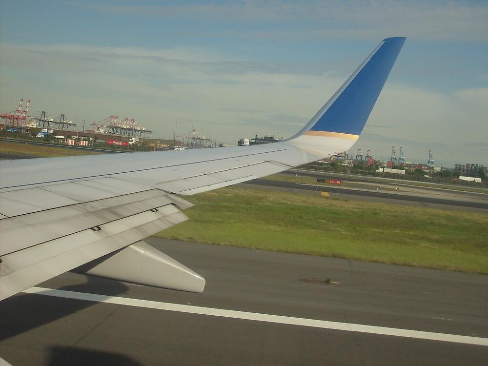 flight to Bogota  2009 by Jerome Saliou
