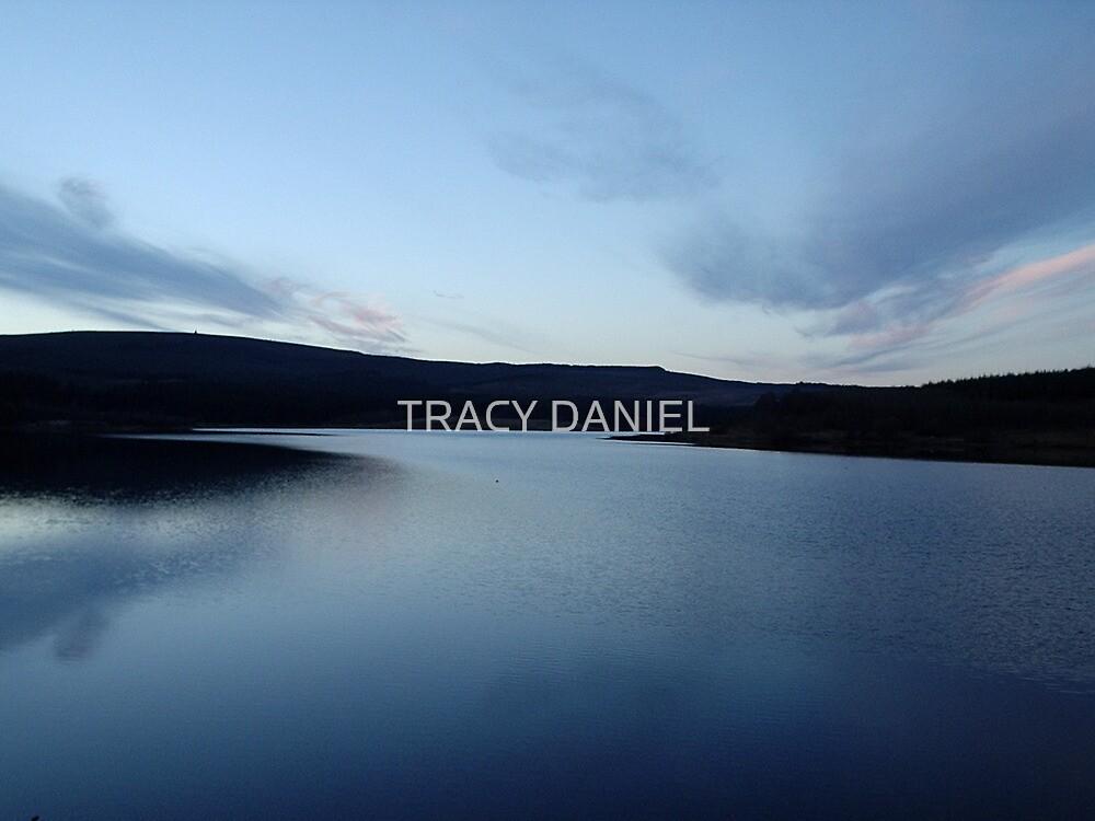 Twilight by TRACY DANIEL
