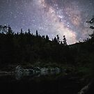 Night sky over a lake with trees by franceslewis