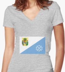 Flag of Sucre State Venezuela Women's Fitted V-Neck T-Shirt