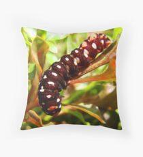 Caterpillar in my Garden Throw Pillow