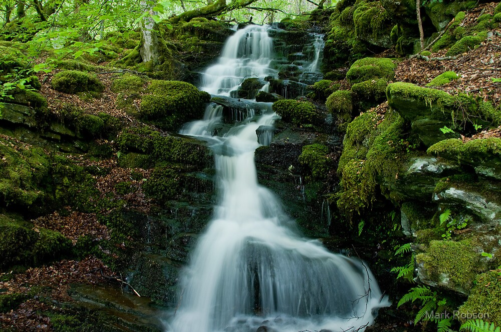 Spring Water by Mark Robson