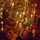 Christmas Tree with Candles and a Kitty by edsimoneit