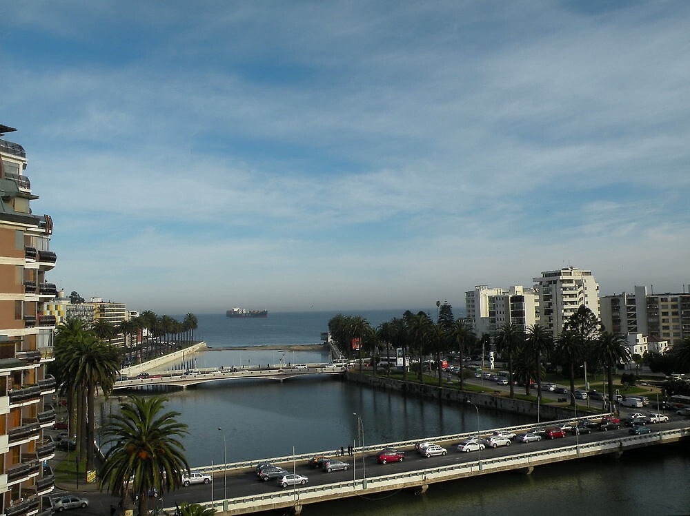 Estero Marga- marga. Viña del Mar. Ciudad Bella -Chile. by cieloverde
