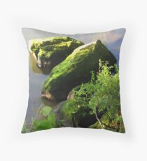 Serenity on The Seine Throw Pillow