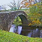 Packhorse Bridge by Trevor Kersley