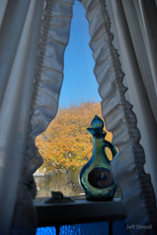 through the bathroom window by Jeff stroud