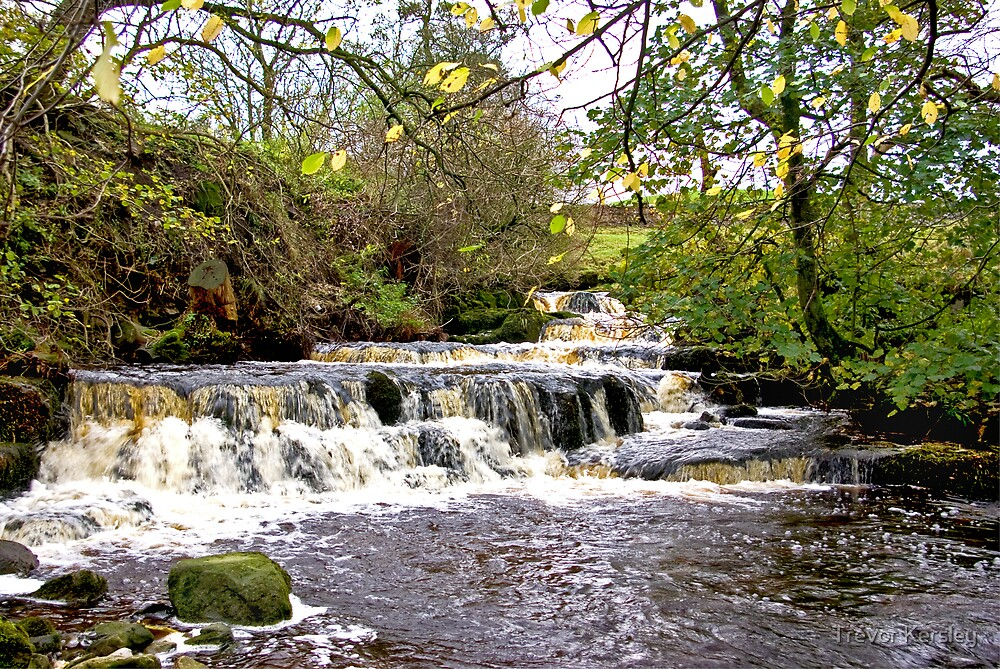 Waterfall #1 by Trevor Kersley