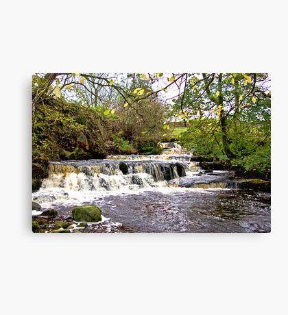 Waterfall #1 Canvas Print