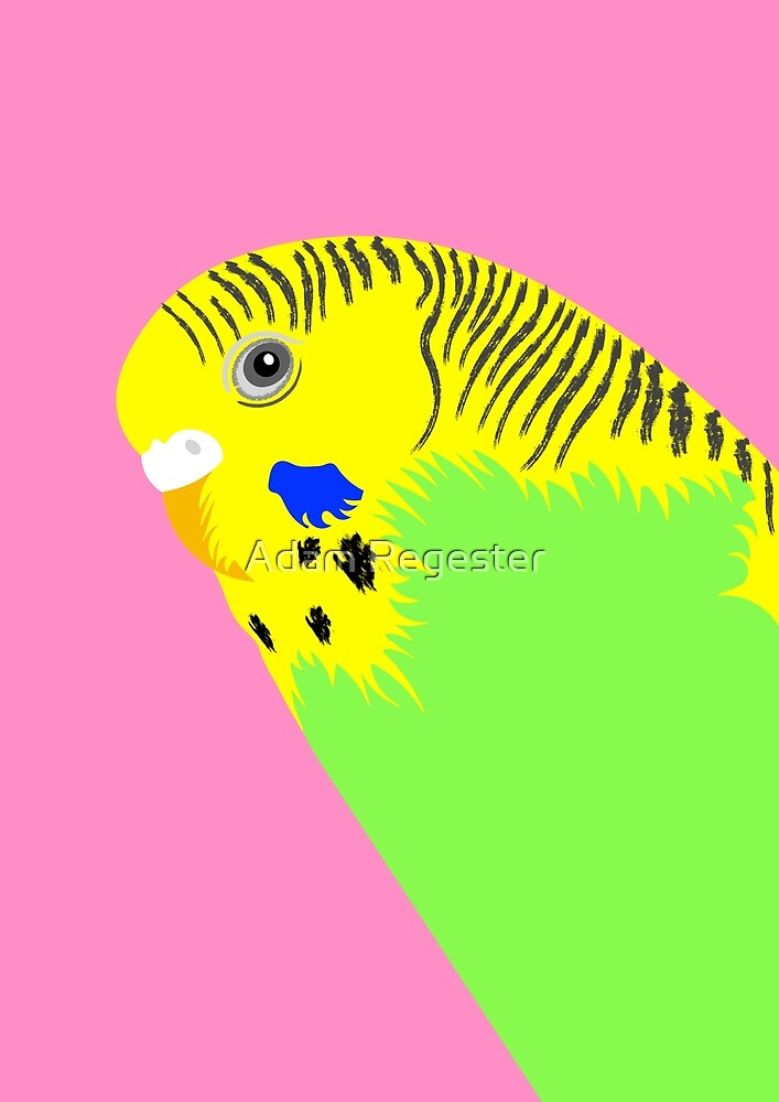 Green Budgie Bird Portrait by Adam Regester