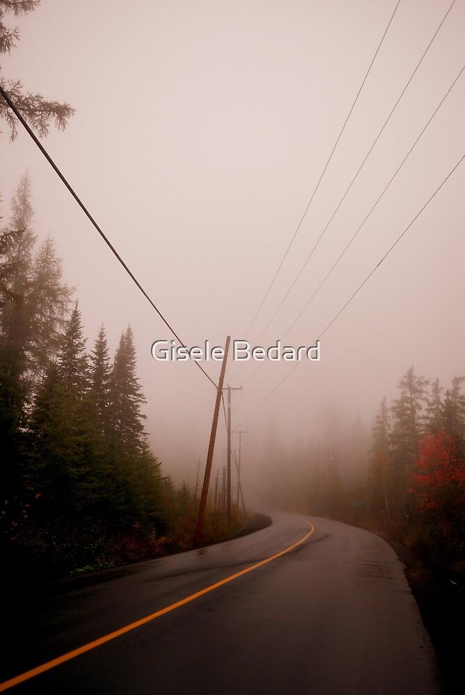 Dark day by Gisele Bedard