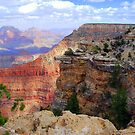 Grand Canyon South Rim by Irvin Le Blanc