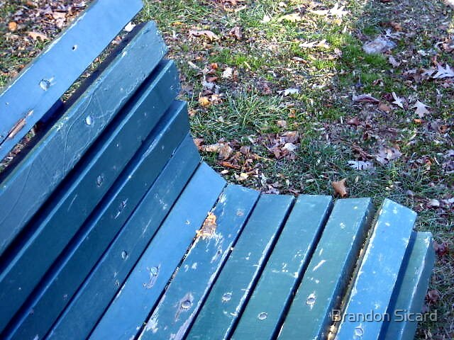 On the Bench. by Brandon Sicard