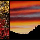 Remembering Zion National Park by gail anderson
