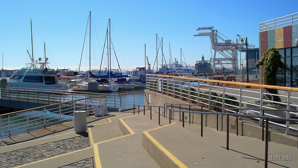 Port of Oakland by daffodil