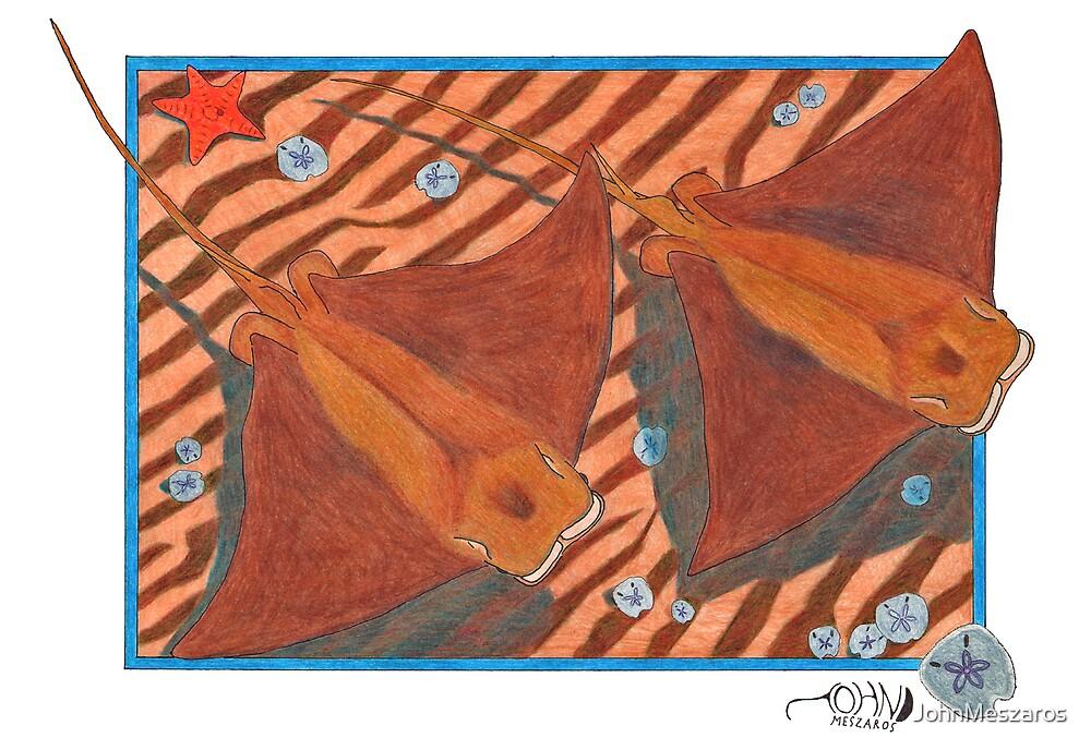 Cownose Rays by JohnMeszaros