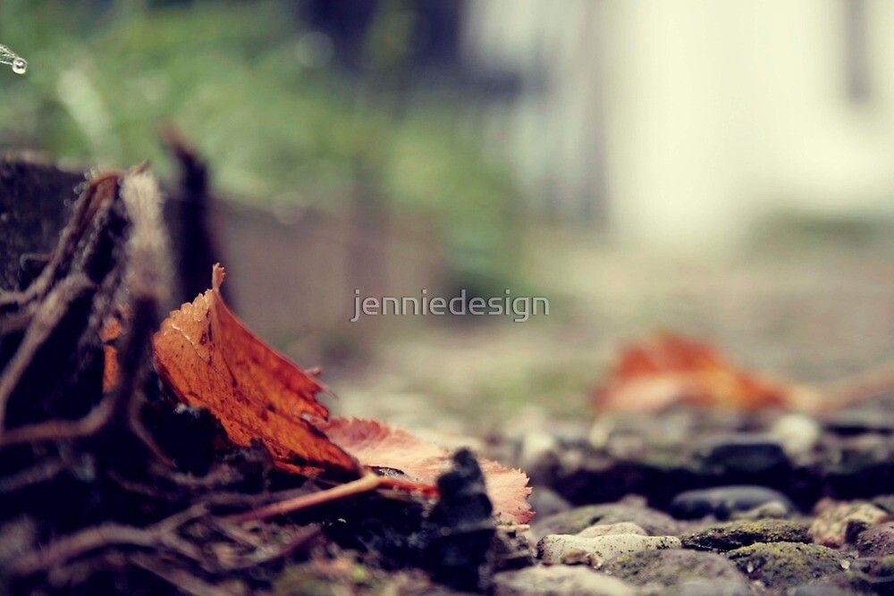 Autumn beauty. by jenniedesign