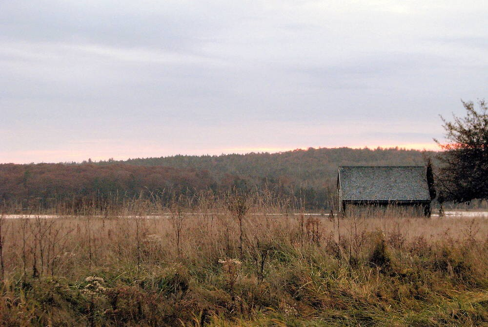 old shed at dusk by Patty Gross
