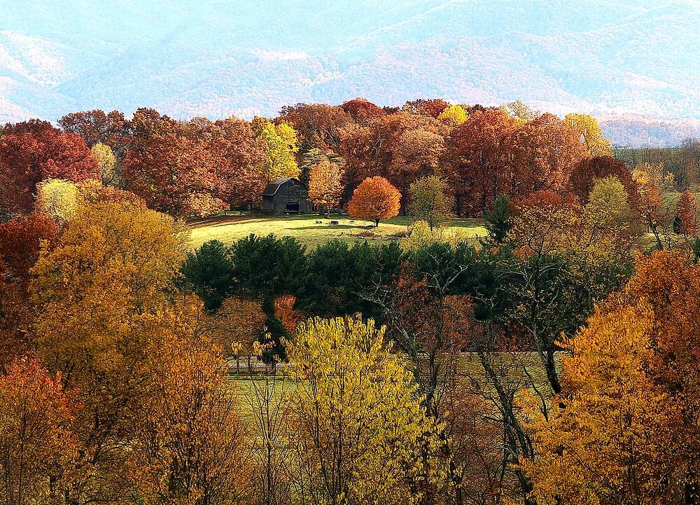 Autumn Niche... by drop-thumb