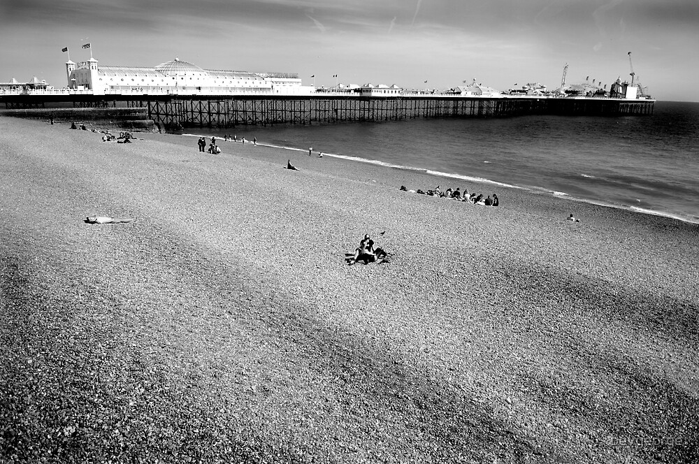 Brighton, Palace Pier in Black & White by bevgeorge