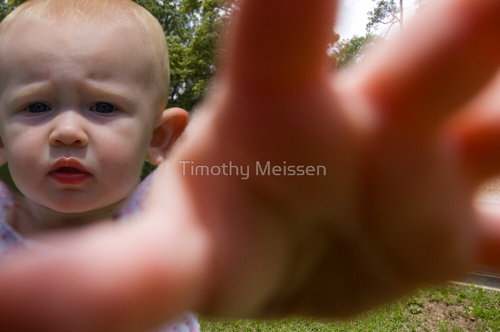 NO PAPPARAZZI!!! by Timothy Meissen