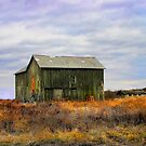 """"""" A barn do ment """" by canonman99"""