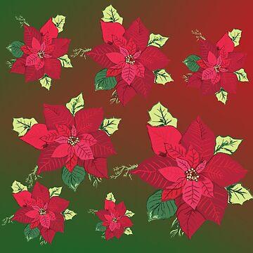 Poinsettia  by Manitarka