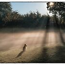 My Own Private Sunbeam by Trish  Anderson