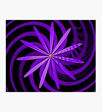Somewhere are Purple Flowers Blooming Photographic Print