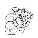 Alabama Camellia State Flower Illustration by JourneyHomeMade
