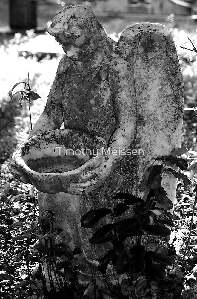 Broken Angel by Timothy Meissen