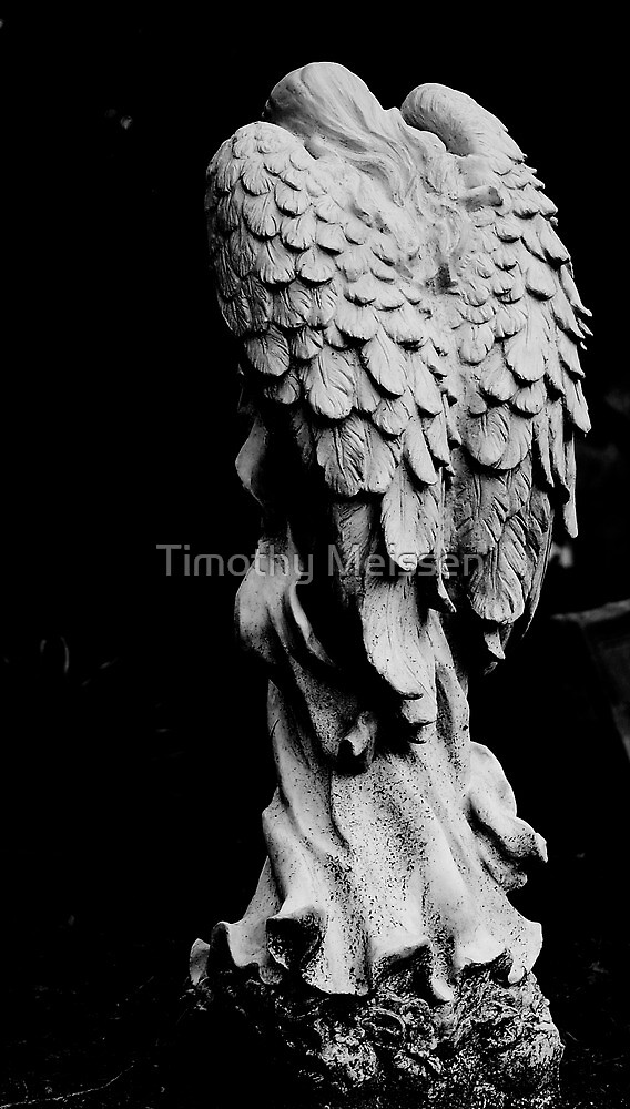Cemetery Angel by Timothy Meissen