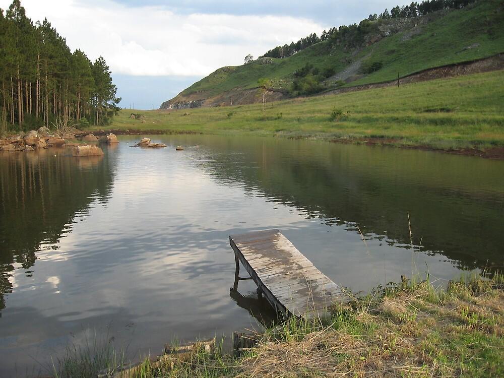 Farm dam with makeshift boardwalk by IlkaW