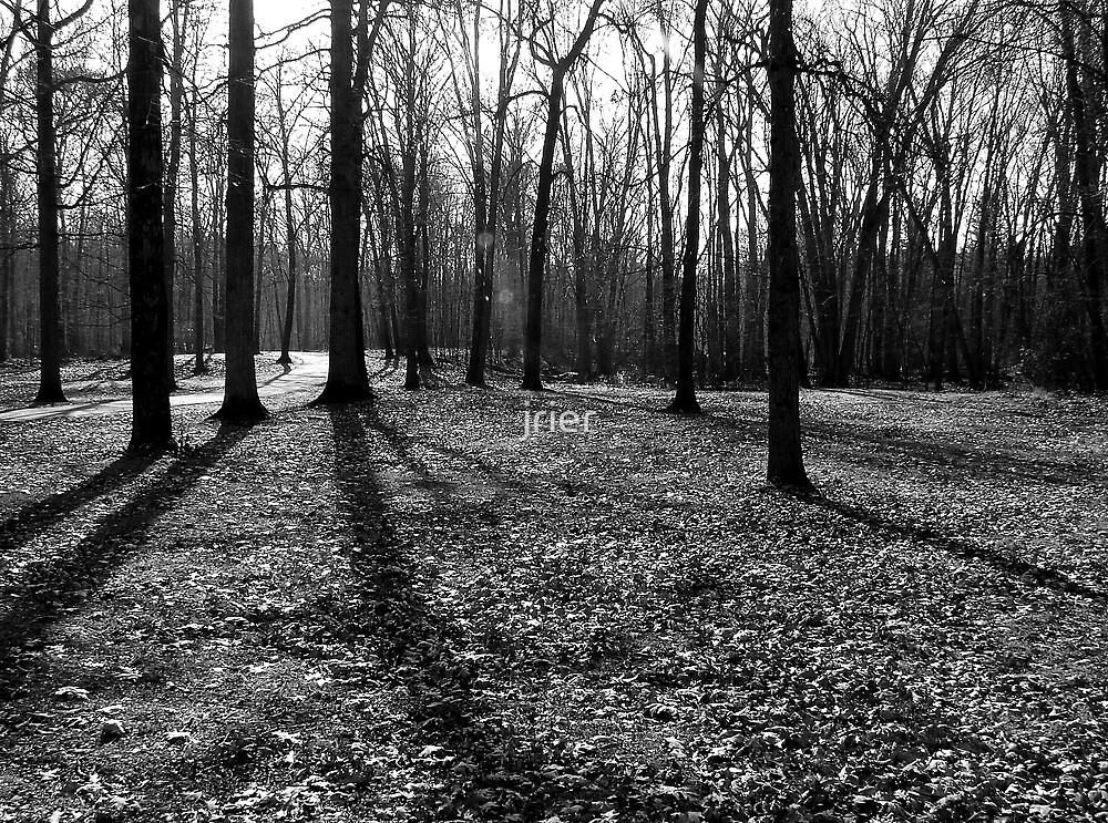 Shadows by jrier