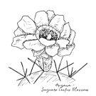 Saguaro Cactus Blossom Arizona State Flower Illustration by JourneyHomeMade