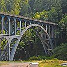 Cape Creek Bridge by Bryan D. Spellman