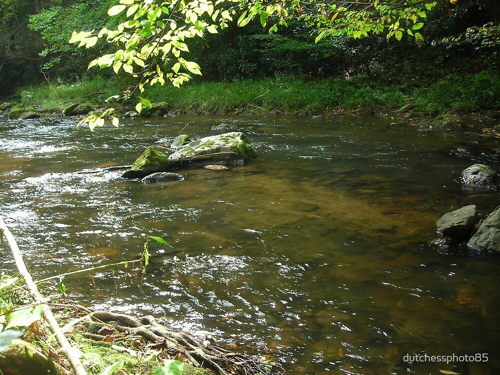 Peaceful Stream by dutchessphoto85