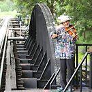 The Bridge Violinist by Pinkanna1980