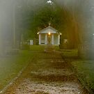 Tolomato Cemetery by Brenda Dow