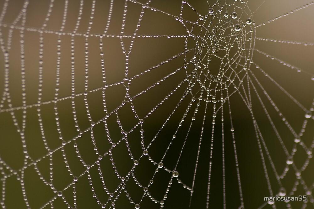 spiders nightmare by mariosusan95