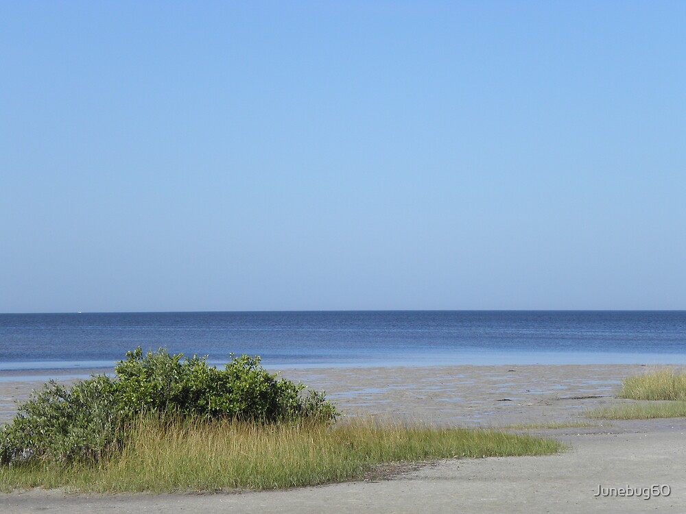 A Bit Of The Gulf of Mexico by Junebug60