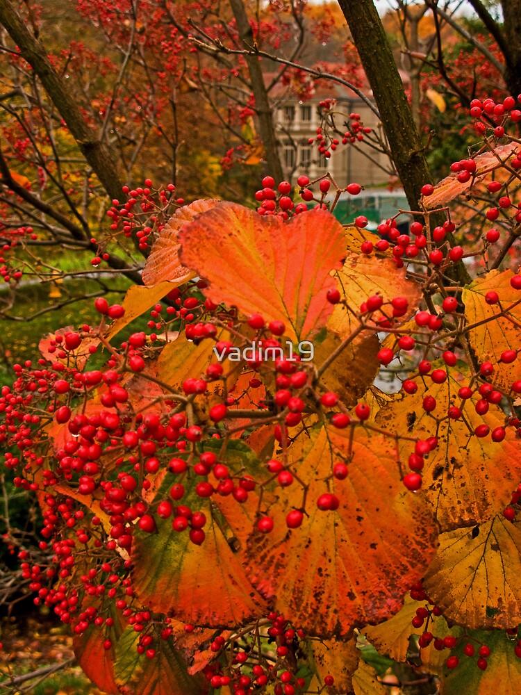 Fall at Winterthur by vadim19