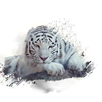 White tiger watercolor painting on white background by svetlanna