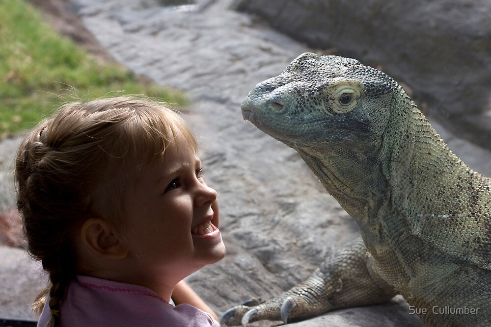 Dragons are Real! by Sue  Cullumber