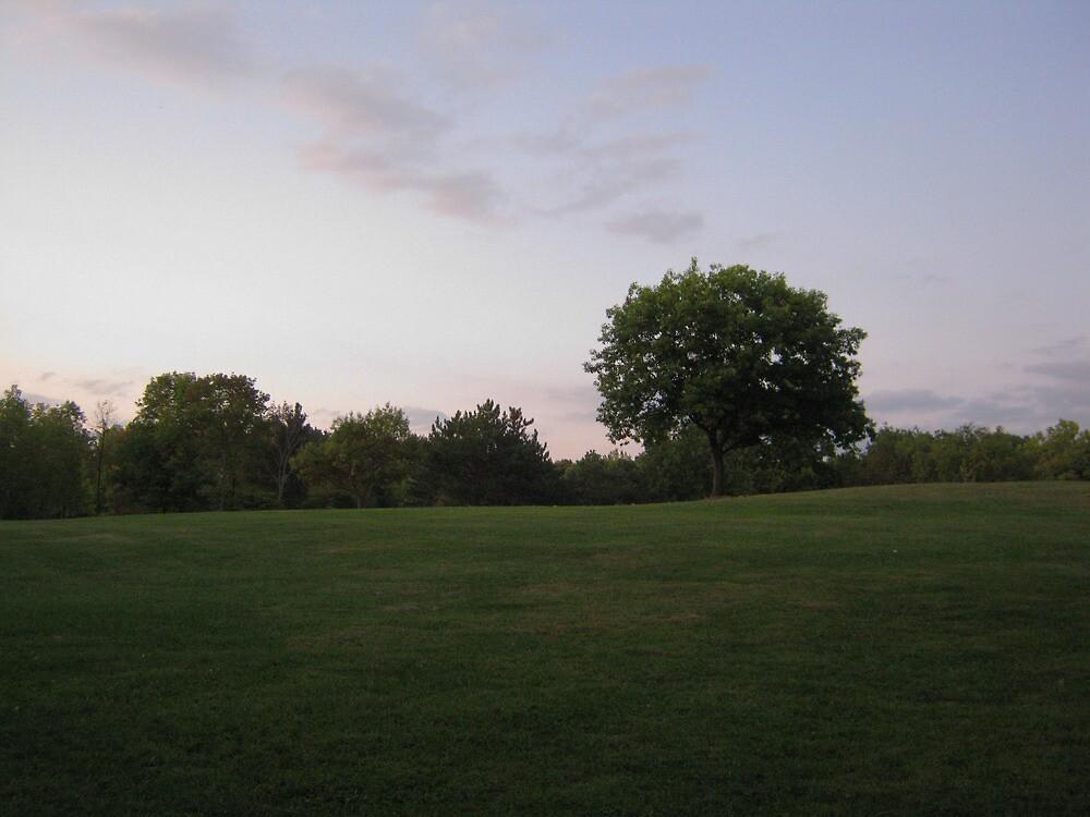 Sunset over Settler's Park by SpaceKace